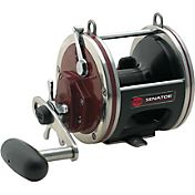 PENN Special Senator Conventional Reel - Wide
