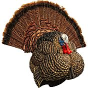 Avian X LCD Strutter Turkey Decoy