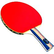 Stiga Master Series Vantage Indoor Table Tennis Racket